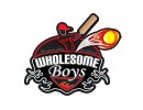 wholesome boys logo